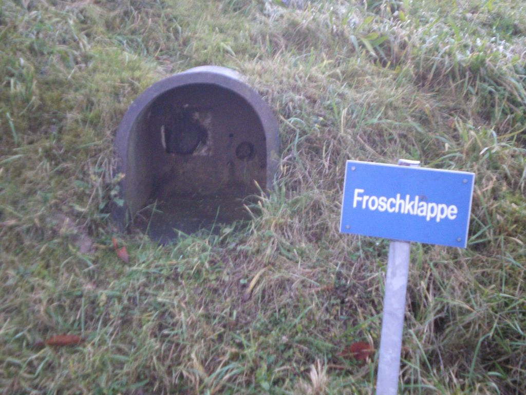 Froschklappe